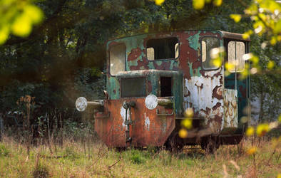 the tiniest train by svoigt