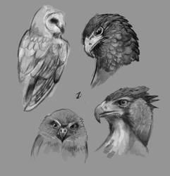 birds #1 by deadmanone