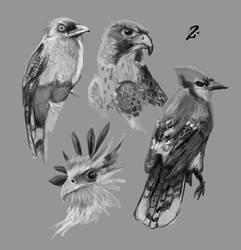 birds #2 by deadmanone