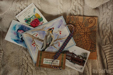Postcard 'Bohemian waxwing' by aka-Selva