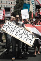democracy for egypt by bruised--vein