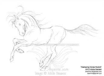 Galloping Horse Sketch by Aryenne