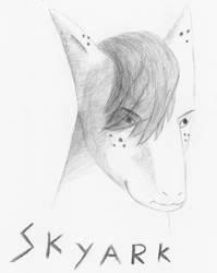 Skyark Sketch Request by Tydusis
