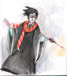 Harry Potter by Richerand