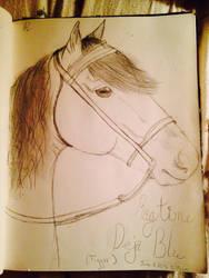 Morgan horse by Puppypancake