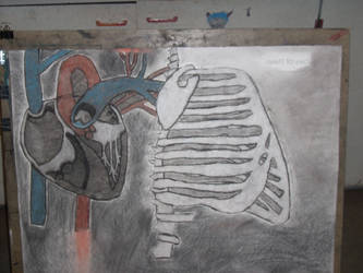 for my art class by xanderman1201