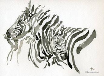 Zebra by Kerong