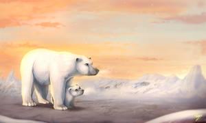 Arctic by Vaynese