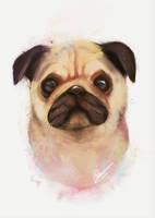 Pug by Vaynese