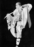 Secrets of Shaolin by Thea-Nu