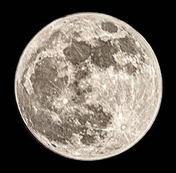 Supermoon, Round Two by heypeter