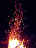 rising phoenix by anveshdunna