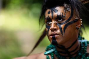 Mayan warrior... by jeffzz111