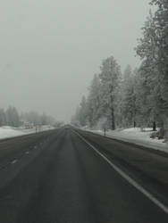 the long drive by jessjessspaz