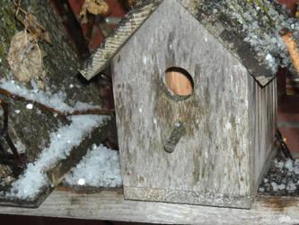 my winter house by jessjessspaz