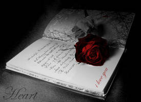 book with rose by Al-hindi