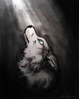 wol by NaurEvan