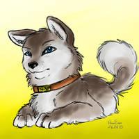 Pup by NaurEvan