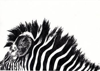 Zebra by specialneeds0468