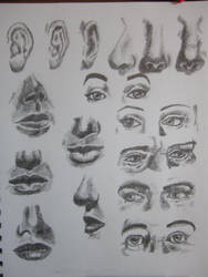 Facial Features Study by Karire