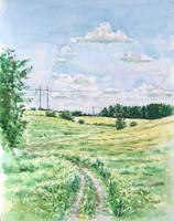 Summer landscape by ecobiotic