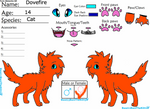 Dovefire Reference sheet 2013 by Finland-Skywalker
