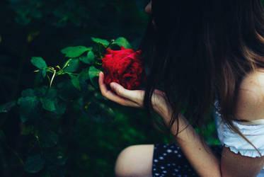 A Garden Star by PersephonaLight