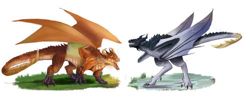 Dragon and Wyvern by SolidTurtle1