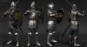 Veteran Knight by Ducard84