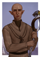 Dragon Age Inquisition Solas by dreNerd