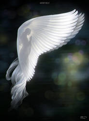 Angel of Prayer by Develv
