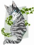Ivypool's Melancholy by Languidcat