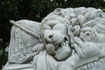 The Lion of Atlanta, closeup by mumblyjoe