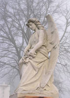 Steated angel by mumblyjoe