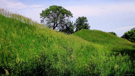 Indian Mound 2 by mrmd53