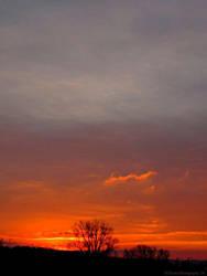 New Dawn by mrmd53