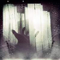 Catch a shadow by siamesesam
