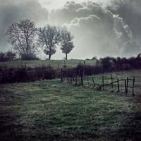 One foggy day cross by siamesesam