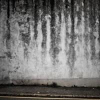 Wall 95 by siamesesam