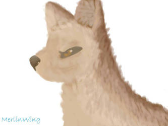 Wolf by MerlinWingOfficial