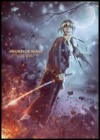 SWORD OF NINJA by saritaangel07