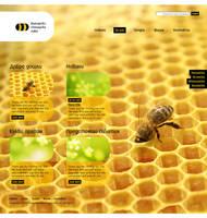 Bulgarian Bee Association by kpucu