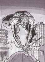 Spider-Man Sketch Card Grays by shinlyle