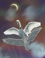 Swan Song by RandyAinsworth