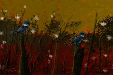 Kingfishers by RandyAinsworth