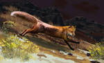 Fort Rock Fox by RandyAinsworth