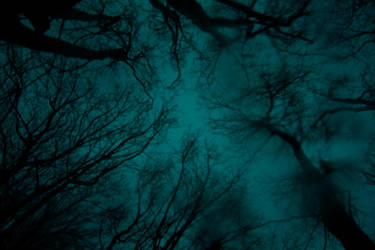 Sapphire Sky by WinterDruidess