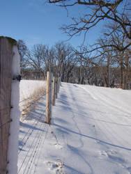 winter by lovingstar