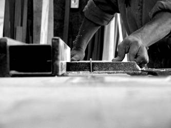 Carpenter 1 by ncr