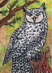 ACEO 009 for Crateris by Irsibil